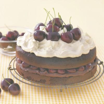 Edmonds Rich Chocolate Cake Mix